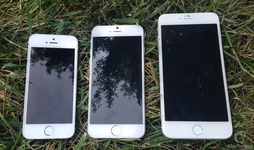 iPhone 6两版本错期发布 或为避免竞争
