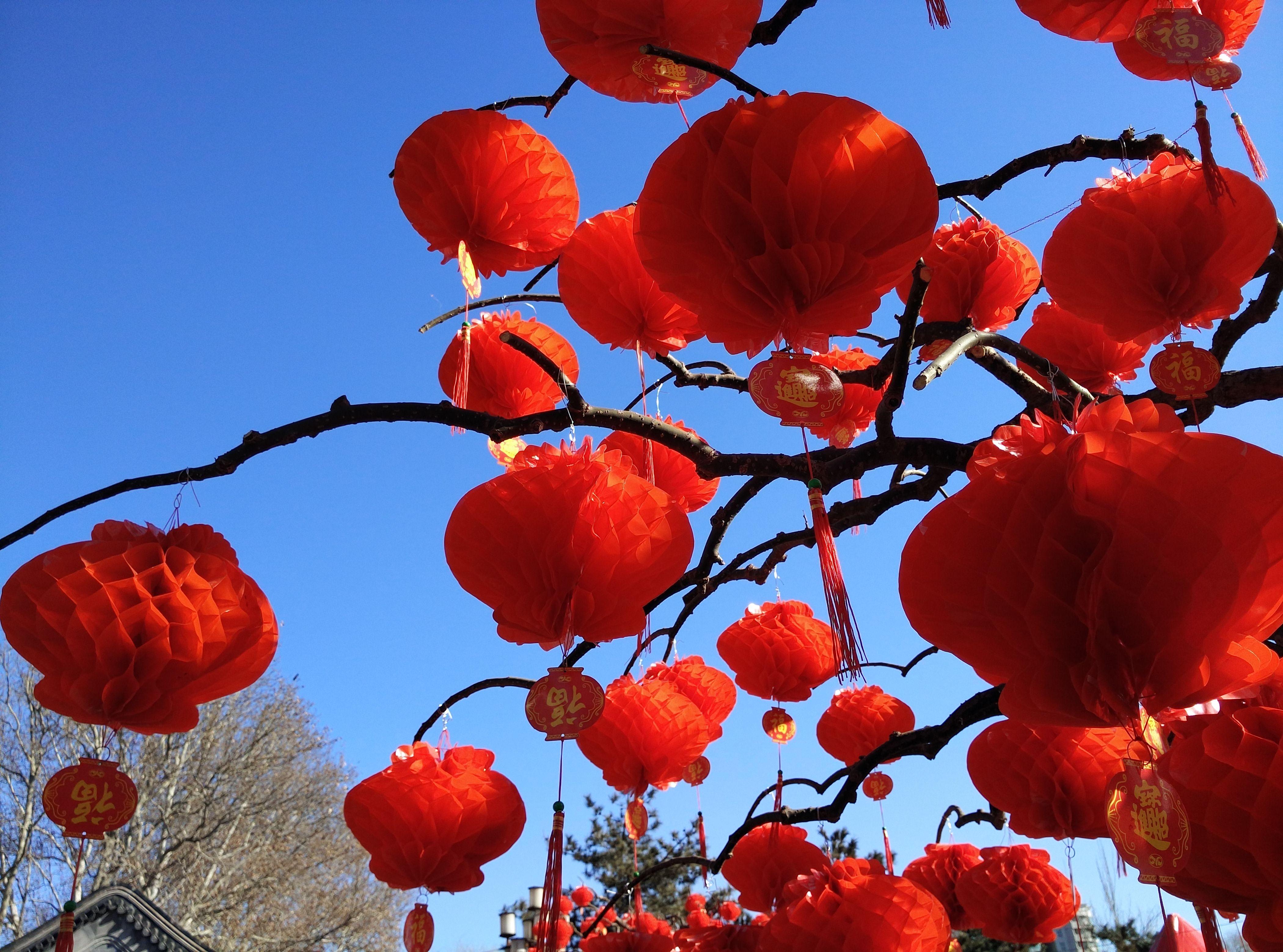 大红灯笼高高挂 360手机随身拍京城年味