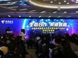 ivvi中国电信订货会成绩斐然 未来更可期