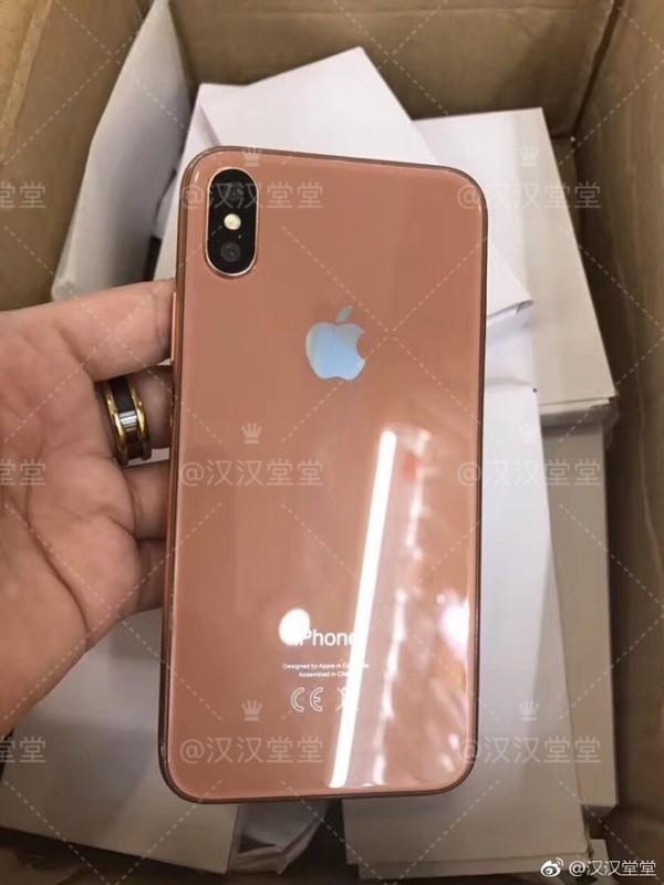 新iPhone配色