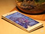 低价防水拍照手机 索尼Z3最新报价800元