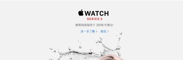 苹果官网显示蜂窝网络服务2018年推出