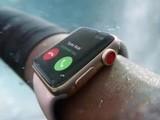 苹果WatchOS 4.2更新 独家支持滑雪运动