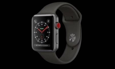 Apple Watch Series 3(图片来自网络)