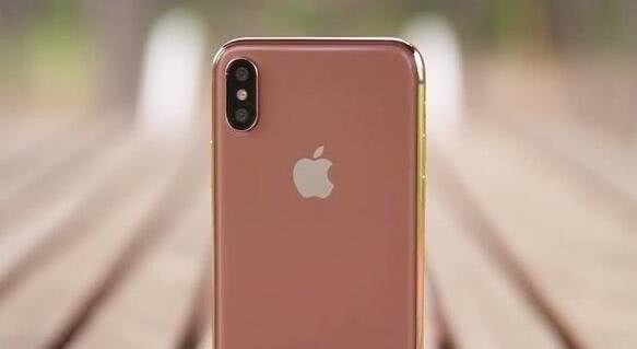 """""""腮红金""""iPhone X"""