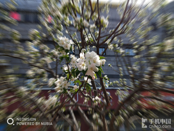 努比亚Z18mini拍照样张--时光相机