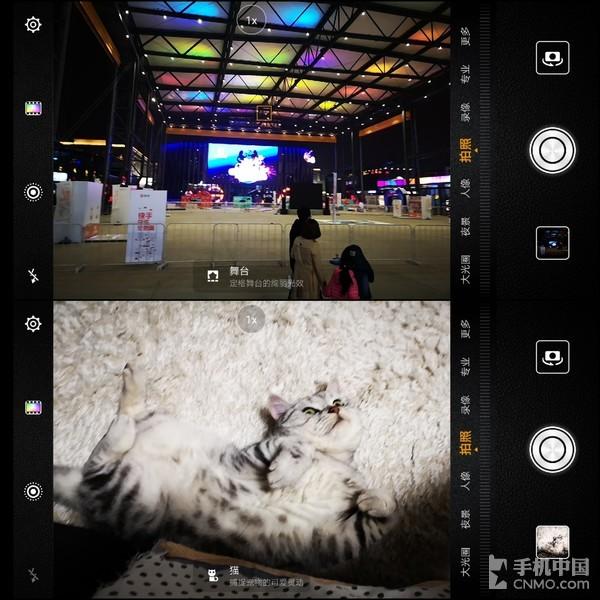 AI场景识别――舞台、猫