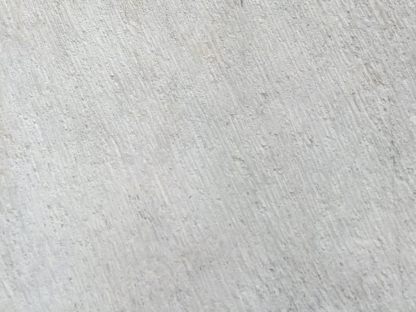 MEIZU 15拍照样张- 细节放大