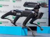 机器狗出没 波士顿动力公司宣布明年开售