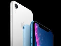 iPhone XR京东开启预约 6色可选6499起