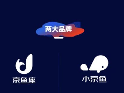 """京東發布全新品牌""""京魚座"""" 加碼AIoT生態"""