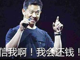 贾跃亭乐视330万股质押 为司法执行操作