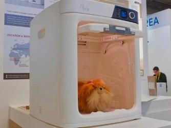 这个冬季 赶快为你家主子配一个宠物烘干机吧!