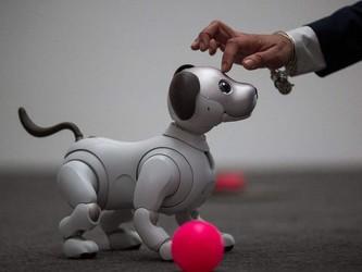 """机器狗克服""""狗生""""最大挑战 在哪摔倒就在哪爬起来!"""