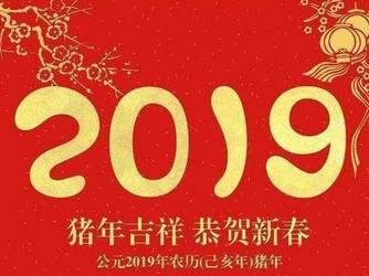 最新年度大预测 2019年网络将进入模式转型的新纪元