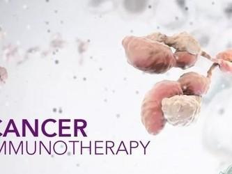 Max Kelson公司将使用人工智能预测治疗癌症的有效性