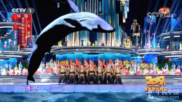 通过VR技术产生的鲸鱼