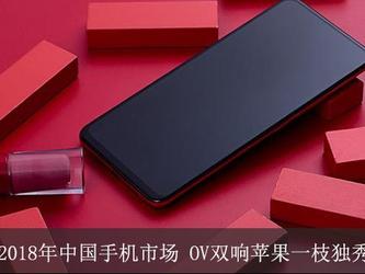 2018年的中国智能手机市场:OV双响 苹果一枝独秀!