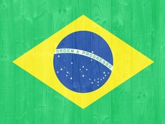 纸质证件转向数字化 巴西驾驶员对数字驾照需求激增