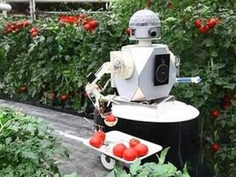 """采摘机器人找到""""第一份工作"""" 化身苹果园里最靓的果农"""