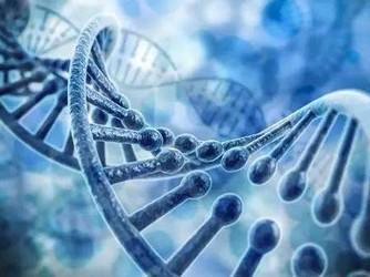 大数据加深度学习揭示RNA选择性剪接 降低疾病风险