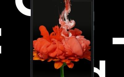 三星折叠屏手机Galaxy Fold国行版正式上架 可预先登记