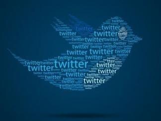 皮尤研究中心最新报告:美国成年推特用户占最大比重