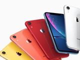入手须及时 2019款iPhone XR或取消珊瑚红及蓝色版本