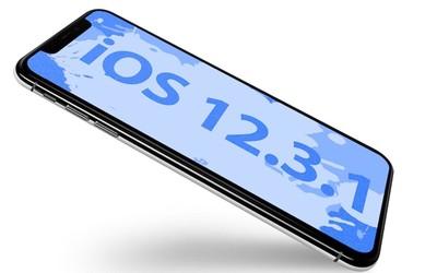 蘋果發布iOS 12.3.1升級補丁 主要修復關于信息的Bug