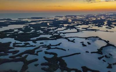 一加携手《国家地理》打造新亚博滚球摄影特刊 探索自然之美