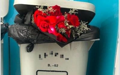 玫瑰花和永生花不是同种垃圾?七夕礼物成垃圾分类热搜词