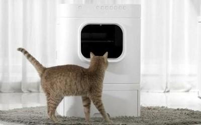 全自动猫咪厕所开启众筹 自动处理便便/售价6000多元