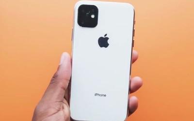 iPhone 11系列最新爆料!超广角三摄/续航大幅提升