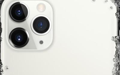 京东iPhone新品首发预售战报 销量同比去年增长480%