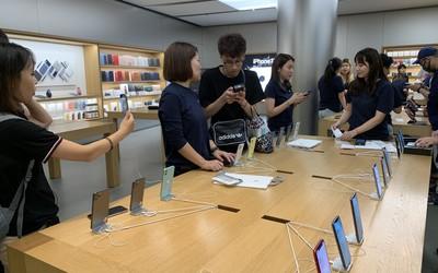 iPhone 11系列国内正式开售 多款新配色成消费者新宠