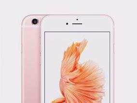 强悍!iPhone摔落山谷1年后被送还 手机仍可继续使用
