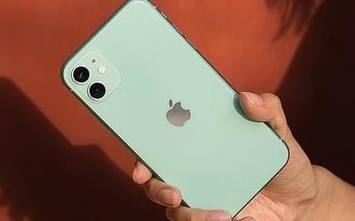库克首谈iPhone 11降价:苹果一直在尽可能保持低价