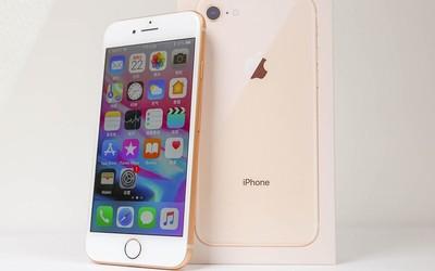 郭明池:Apple将推出iPhone SE2 外观与iPhone 8相当