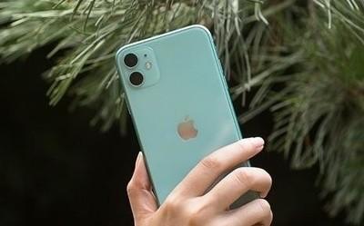 iPhone 11双十一表现惊人 累计销量/销售额均获榜首