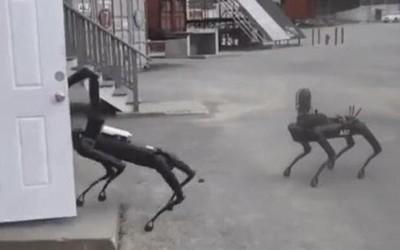 美国警方装备波士顿动力机器狗 却遭致民主机构质疑