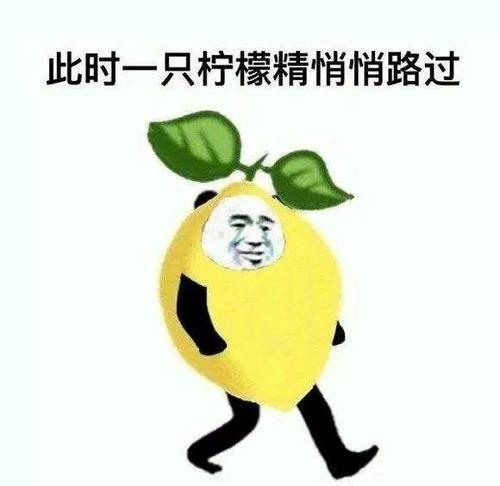 2019十大网络用语出炉  雨女无瓜  柠檬精  996 上榜