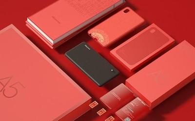 海信阅读手机A5新年礼盒版来了 快买台回家送给孩子