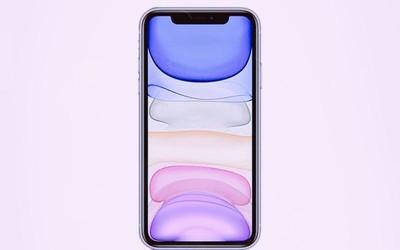 不怕苹果创新只怕它降价 一二月印度iPhone销量激增