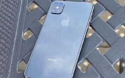 实锤了?疑似iPhone 12 Pro无刘海真机谍照首次曝光