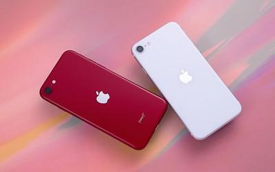 """iPhone SE全面�u�y:�O果打�造的""""迷你杯""""究竟香□ 不香?"""