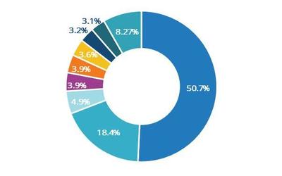 IDC:浪潮/华为/曙光占据中国AI服务器市场74%份额