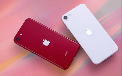 3299起 新iPhone SE成本曝光 相比iPhone 8有这些不同