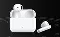 荣耀亲选Earbuds X2无线蓝牙耳机开启预售 价格179元