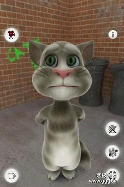 【会说话的汤姆猫 攻略】Android会说话的汤姆猫攻略秘籍